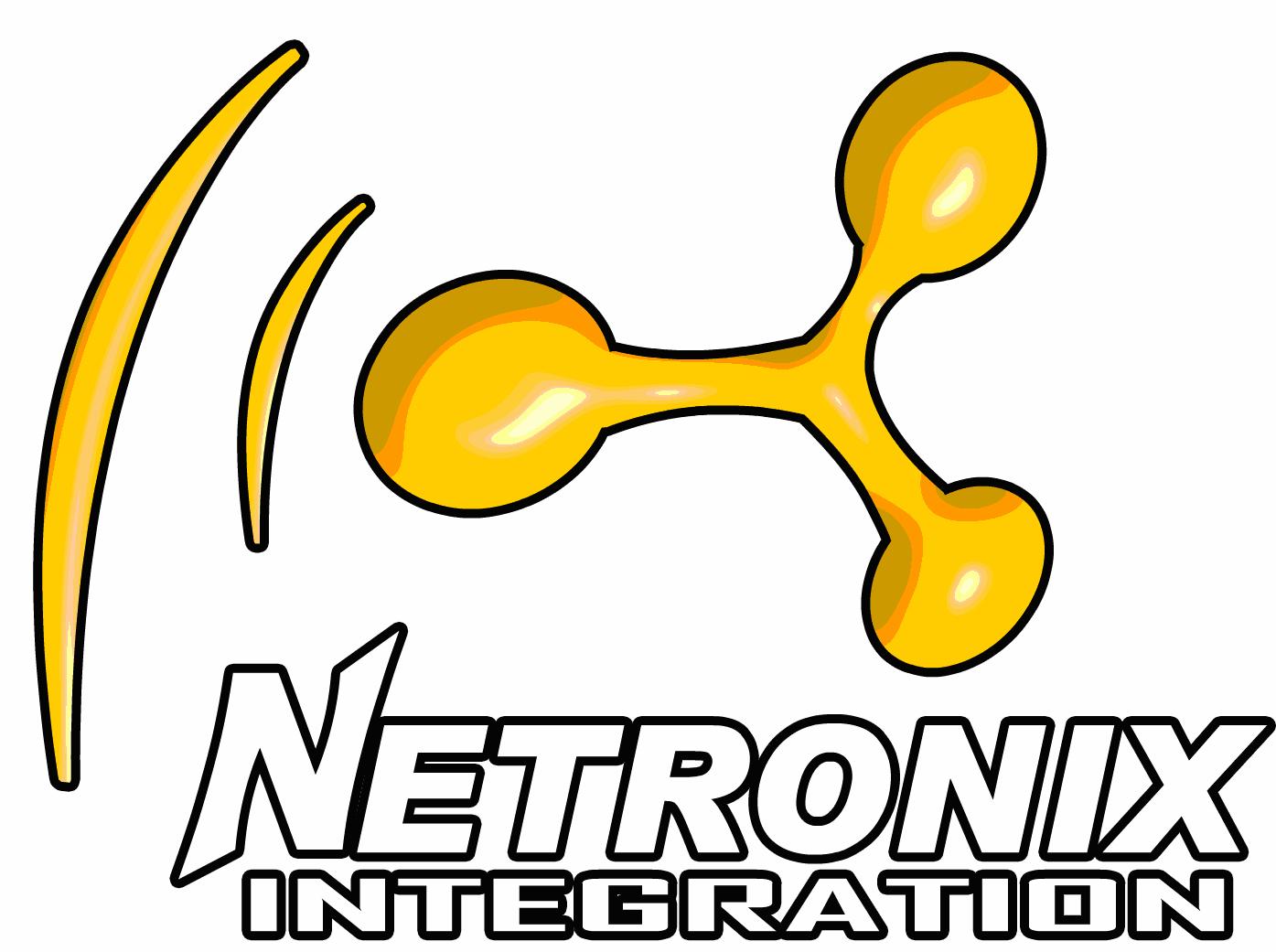 NETRONIX 3D LOGO[2]